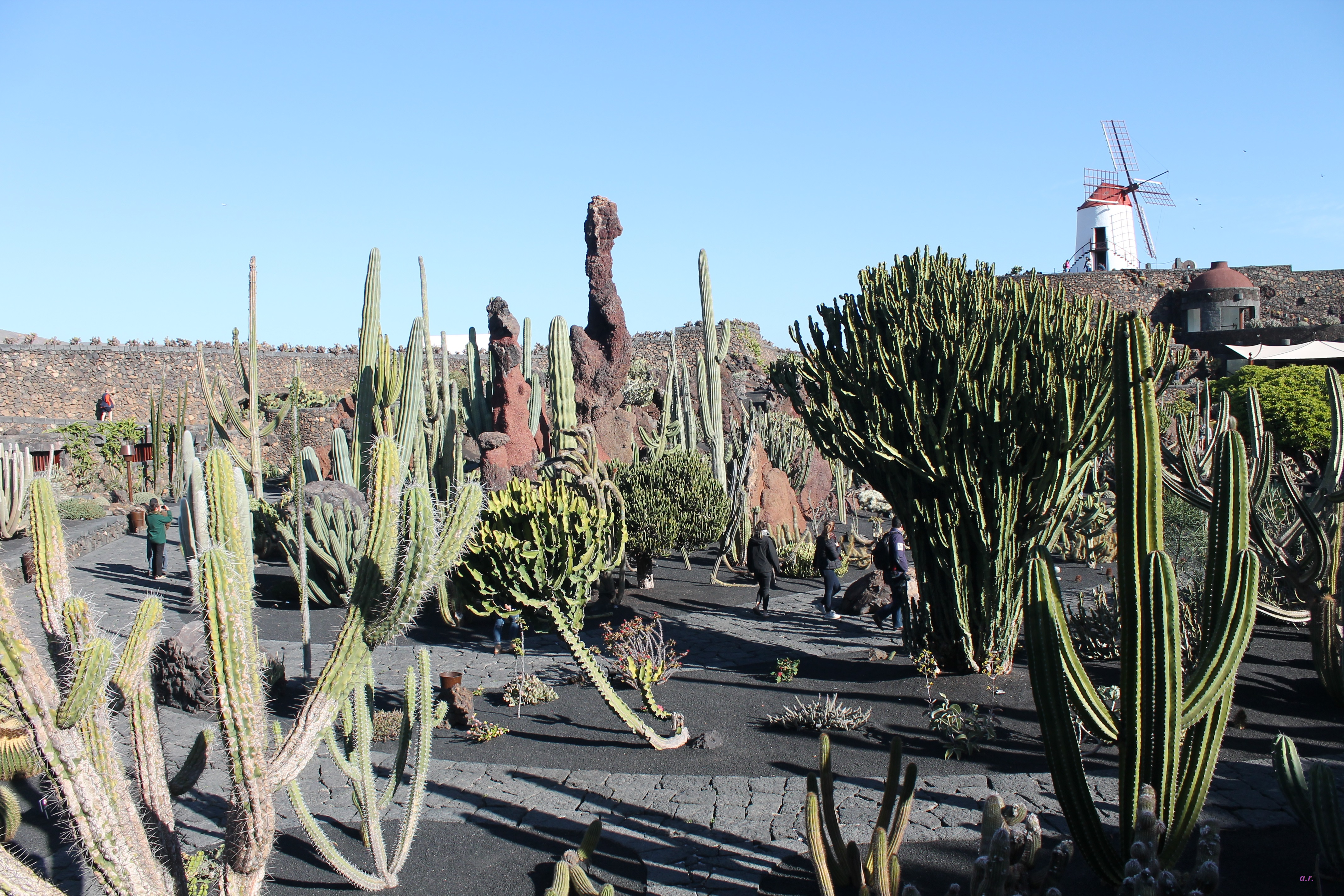 giardino dei Cactus ph. @poshbackpackers