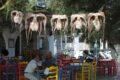 Visitare l'isola di Paros in 3 giorni senza noleggiare l'auto