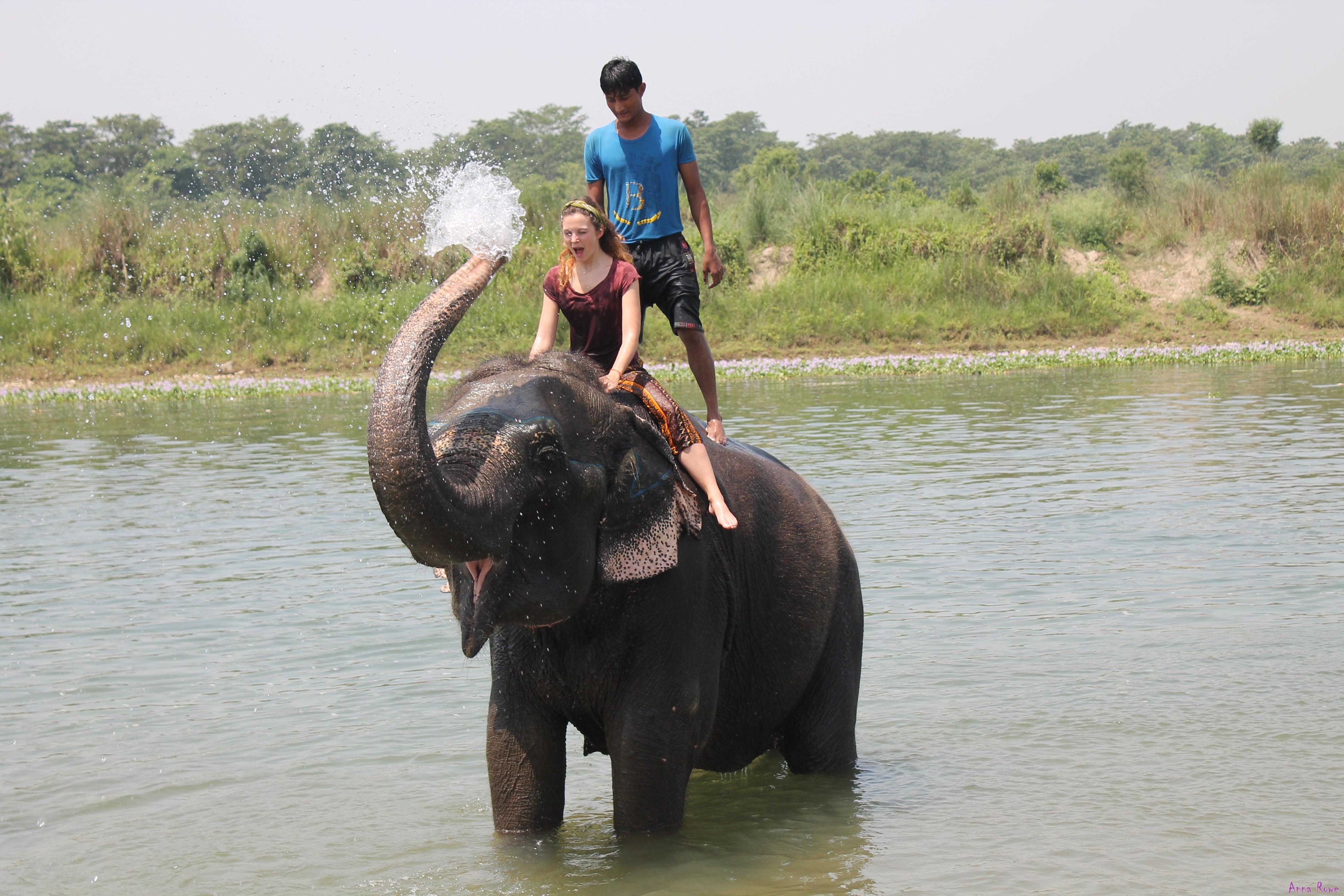 Parco Nazionale di Chitwan @posh_backpackers