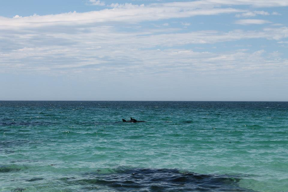Freycinet national park ph. @poshbackpackers due settimane in Australia