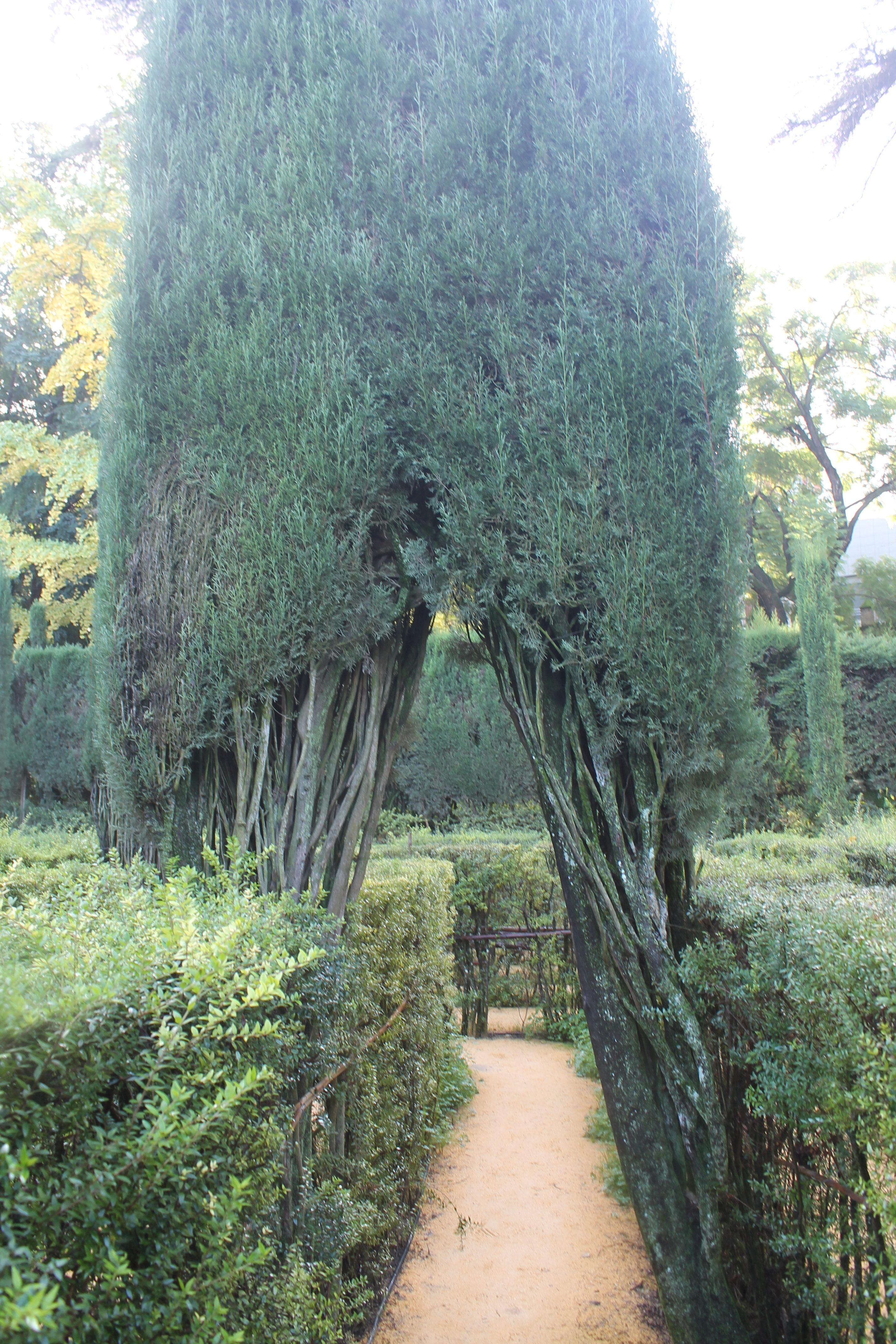 Alcazar - i giardini ph. @poshbackpackers