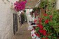 Visitare Cisternino in Puglia - il mio paese