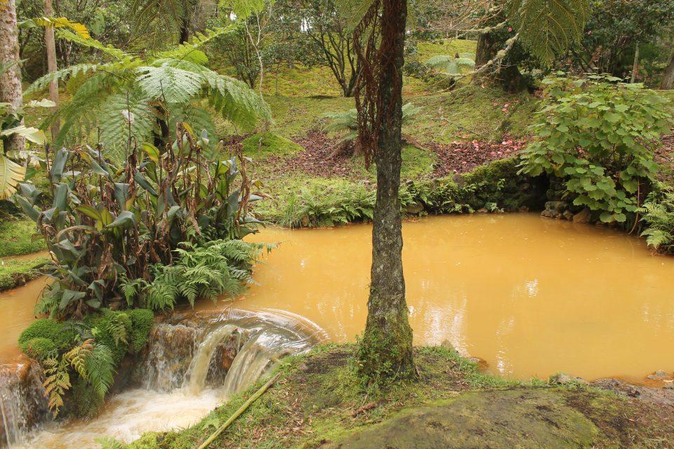 Parque Terra Nostra - Azzorre