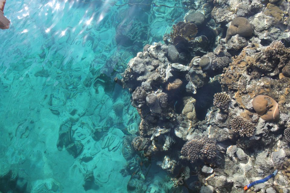 Eilat - mar Rosso
