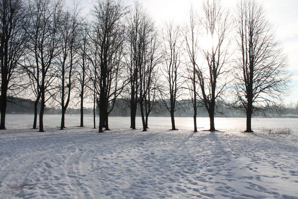 Il lago ghiacciato a Trakai
