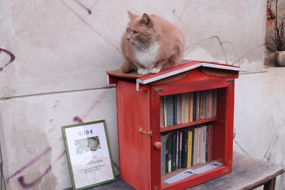 Libreria di Uzupis @posh_backpackers