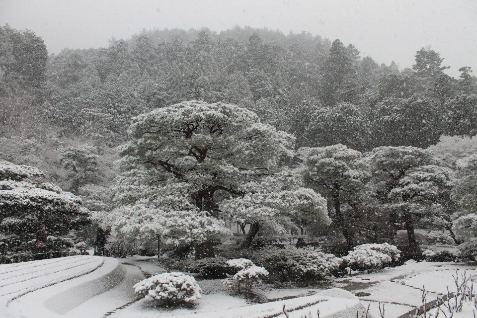Kyoto sotto la neve - Giappone in inverno