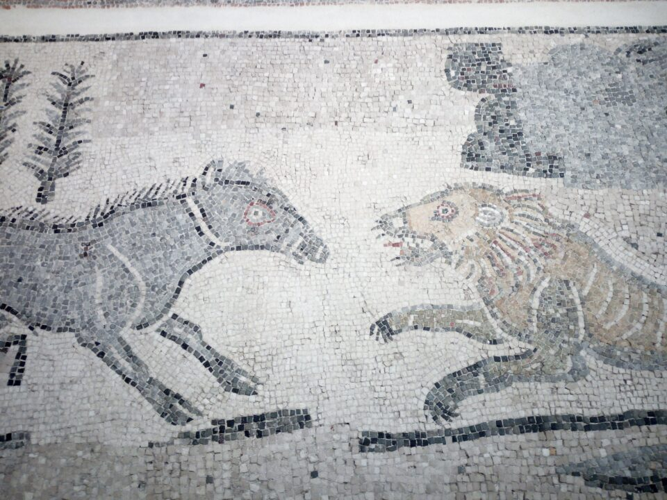 MARTA Taranto posti da vedere in Puglia