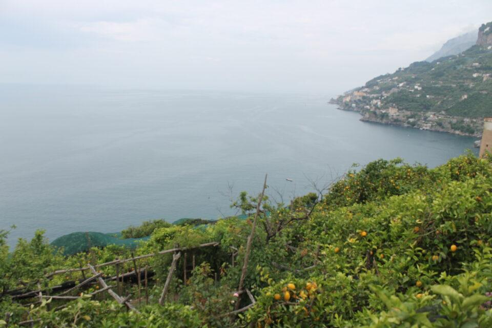 Sentiero dei Limoni - 4 giorni in Costiera Amalfitana