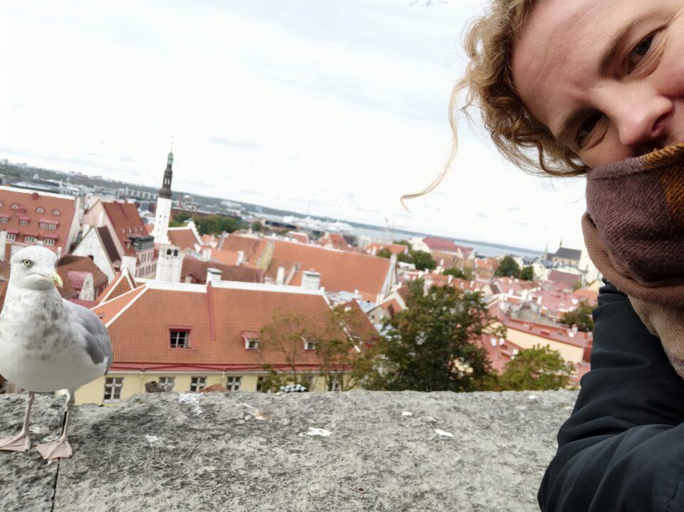 Cosa fare a Tallinn - una foto con Stephen