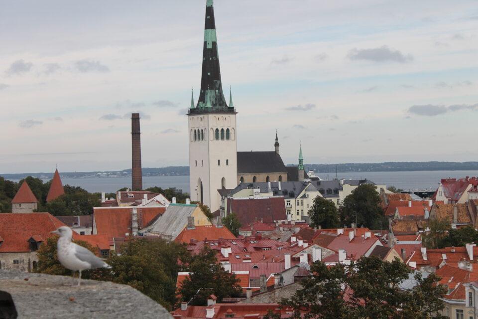 Vista su Tallinn dal punto panoramico Patkuli